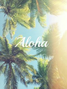 Unfortunately, this Aloha means goodbye. Goodbye Summer. You've been real. See you next year.