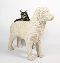 dog scratching post! Revenge for all of the cat-shaped chew toys!