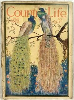Image result for vogue in the country