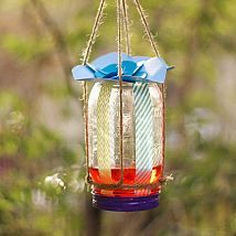 Make a DIY Butterfly Feeder in 6 Easy Steps! on't underestimate the butterfly - it's more than just a pretty garden addition! There are 561 known butterfly species in the United States and Canada, all of which pollinate your flowers. Butterfly Feeder, Diy Butterfly, Butterfly Species, How To Attract Birds, How To Attract Hummingbirds, Solar Light Crafts, Solar Lights, Uses For Mason Jars, Outdoor Projects