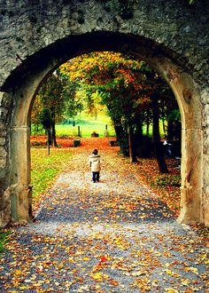 Fall Archway-I imagine love, holding hands, and kisses. Beautiful World, Beautiful Places, Beautiful Pictures, Foto Nature, Best Seasons, Parcs, Fall Season, Belle Photo, Scenery