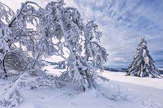frozen... by andreas-t. Please Like http://fb.me/go4photos and Follow @go4fotos Thank You. :-)