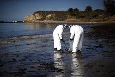 EYE OPENER A BEACH OF AN OIL SPILL Santa Barbara's pristine coastline is now coated in crude.