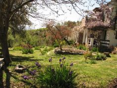 A tranquil smallholding in a beautiful rural valley above Ferreirola, a Berber village in the Alpujarra