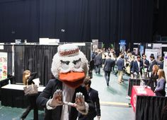 Toppel Peers Blog – Career Expo Craze!