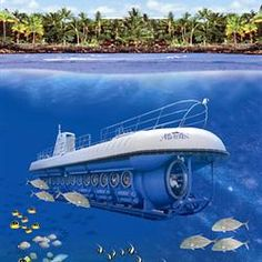 See a unique view of the Big Island at a special low price by booking your Atlantis Adventures Big Island submarine tour with Reserve Hawaii.
