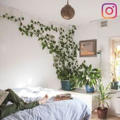 In a farmhouse design, the side table seems to have important roles that are unreplaceable. The farmhouse side table is not there for merely functions but the right design and … Indoor Plant Wall, Indoor Plants, Indoor Garden, Indoor Climbing Plants, Indoor Ivy, Hanging Plants, Cute Dorm Rooms, Cool Rooms, Bedroom Plants