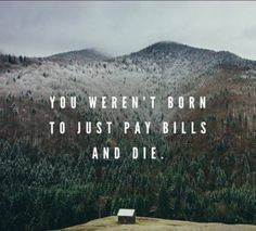 You weren't born to just pay bills and die. Do the fun shit. Enjoy life