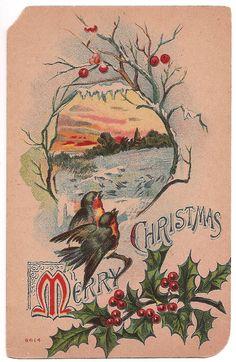 Antique Merry Christmas 1910 Postcard - Robins