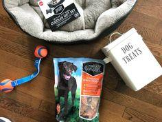 5 Easy Ways you can pamper your pup right now! Easy, no-fuss! https://www.pinterest.com/bjswholesale/ #BJsSmartSaver  #ad