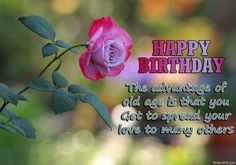 Happy Birthday Wishes Greeting Cards Images