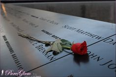 Beautiful 9/11 memorial - New York City with new World Trade Center - amazing large reflection pools, NYC, Manhattan, WTC, remember, rose, red