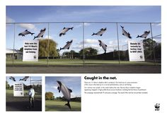 http://adsoftheworld.com/media/ambient/wwf_stop  Advertising Agency: Saatchi & Saatchi New Zealand Executive Creative Director: Mike O Sullivan Art Director: Ant Hatton Copywriter: Robbie Brammall Photographer: Stephen Langdon Via: elmaaltshift