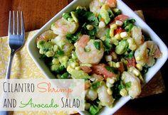 Cilantro Shrimp and Avocado Salad