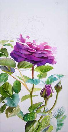 Watercolor Rose Painting Tutorial – Heidi Klum Rose