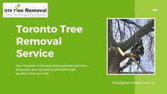 From tree disease protection to pruning and trimming, we put expertise and passion into the care of your trees and the greening of your environment. Call at now. Tree Removal Service, Removal Services, Gta, Environment, How To Remove, Trees, Passion, Home Decor Trees, Environmental Psychology