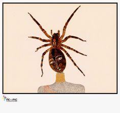 Pic to Pic: La Reina Zulú #fotografiailustrada #ilustracion #illustratedphotography #illustration #photography #pictopic #poetry #poesia #spider #mask #queen #zulu #reina #mascara #araña #animals #animales