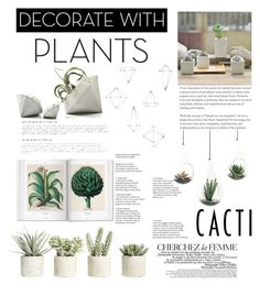 """""""plants🌵"""" by ercy ❤ liked on Polyvore featuring interior, interiors, interior design, home, home decor, interior decorating, La Femme, Umbra, NDI and Allstate Floral"""