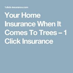 Your Home Insurance When It Comes To Trees – 1 Click Insurance