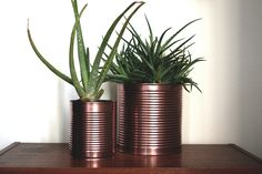 tin cans as planters - www.craftifair.com
