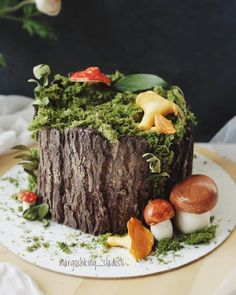 I made a little collection of tree stump cakes and want to share it with you guys. In case you need to make a stump cake 😉 All the cakes… Woodsy Cake, Woodland Cake, Pretty Cakes, Cute Cakes, Moss Cake, Mushroom Cake, Tree Stump Cake, Nature Cake, Cookie Recipes For Kids