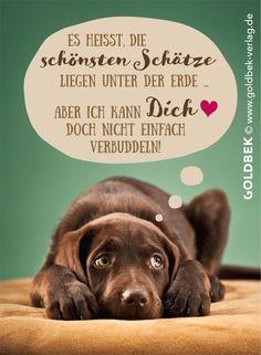 Postkarten - niedlicher Hund. Der beste Freund des Menschen!