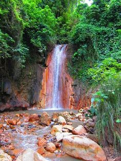 St Lucia- Sulphur Springs is home to a seven-mile wide volcanic crater that visitors to St. Lucia can drive to. Visitors should not miss the hot springs and mud baths.