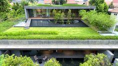 Modern Zöldtető :)
