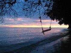 Beach swing at dusk, Fiji
