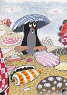 (2015-02) Muldvarpen bruger en muslingeskal som hat på stranden