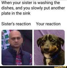 Found on iFunny Crazy Funny Memes, Funny Animal Memes, Really Funny Memes, Stupid Memes, Funny Relatable Memes, Haha Funny, Funny Cute, Funny Texts, Funny Jokes