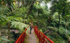 Visiter Funchal, la capitale de Madère - via Miles & Love 04.06.2015 | Funchal est une ville de montagne. Partout où tu regardes (et le spectacle est encore plus saisissant vu de l'océan) les maisons semblent s'agripper à la falaise. Et là où les hommes n'ont pas réussi à construire, tout autour, on découvre une végétation abondante, des jardins fleuris et des terrasses cultivées, donnant à l'ensemble un cachet incroyable. #madeira #portugal #voyage Photo: Sur le pont
