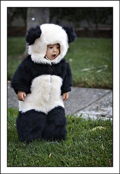 This panda costume is amazing. My kids will deffinatly be dressed up as pandas! So Cute Baby, Baby Love, Cute Kids, Cute Babies, Baby Kids, Baby Baby, Funny Kids, Costume Halloween, Halloween Clothes