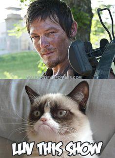 See...Grumpy Cat has extremely good taste!