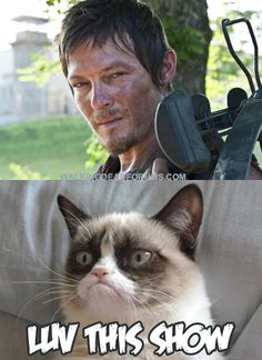 Daryl Dixon grumpy cat...awesome!