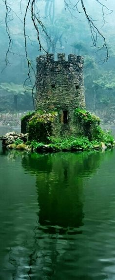 Tiny castle in a lake