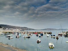The Harbour in Lyme Regis, Dorset