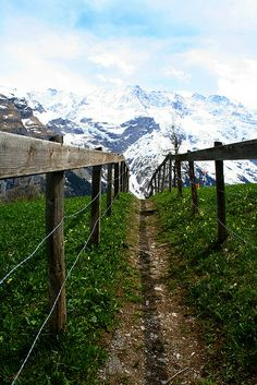 Gimmelwald, Switzerland. Path from cable car up to Walters place. Did it in the pitch black with the sounds of cows and goats around.