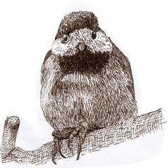 4コマ漫画のオチで描いた最後の一コマのIllustrationヤマガラ