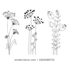 Floral pattern vector doodle designs - by rvika on VectorStock® Flower Line Drawings, Flower Sketches, Floral Pattern Vector, Motif Floral, Hand Embroidery Patterns, Embroidery Art, Doodle Drawings, Doodle Art, Dandelion Drawing
