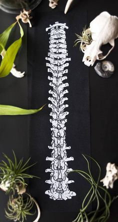 Spine Back Patch White Ink Ankle Tattoo Small, Ankle Tattoos, Small Tattoos, White Tattoos, Tiny Tattoo, Punk Patches, Pin And Patches, Back Patches For Jackets, One Word Tattoos
