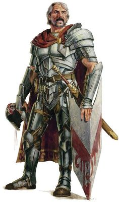 Wisdom: Though generally less critical than Charisma, a good Wisdom score is necessary in order for a Paladin to access divine spells at higher levels.