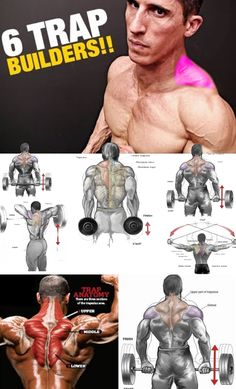 🔥 How to Shrugs for Muscle Growth Traps 🚨 The shoulder belt visually looks unfinished, if the trapezius muscles are not sufficiently developed. Fitness Workouts, Weight Training Workouts, Gym Workout Tips, Sport Fitness, Muscle Fitness, Workout Videos, Fun Workouts, Gain Muscle, Easy Fitness