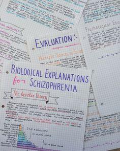 eat, sleep and study