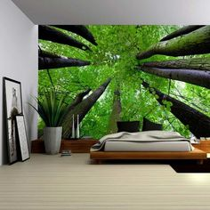 Wall26 - Gazing Up Into a Leafy Covered Forest - Wall Mural, Removable Sticker, Home Decor - 66x96 inches