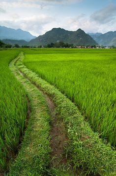 Mai Chau, Vietnam http://viaggi.asiatica.com/
