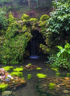 Magical stream and waterfall in a cave, in the deep forest. Beautiful World, Beautiful Places, Magical Forest, Deep Forest, Nature Aesthetic, Fantasy Landscape, Landscape Design, Dream Garden, Mother Earth