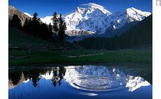 Fairy Meadows – Circle of Life – Pakistan Beautiful and Amazing Pictures of Pakistan - پاکستان کی خوبصورت اور حیرت انگیز تصاویر