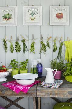 puutarhavaja,kesäkeittiö,puutarhapöytä,yrtti,ruukkupuutarha,ruukkukasvi,oleskelupaikka,kodikas,puutarha,viherpiha