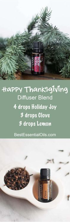 - Want to know all about clove essential oil? I've included everything there is to know about doTERRA clove essential oil uses including DIY & food recipes. Clove Essential Oil, Essential Oil Uses, Doterra Essential Oils, Doterra Diffuser, Essential Oil Diffuser Blends, Happy Thanksgiving, Happy Fall, Diffuser Recipes, Young Living